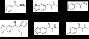 Bath salt research paper